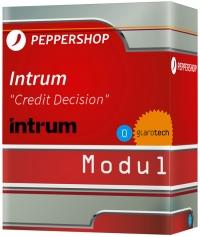 Intrum Credit Decision